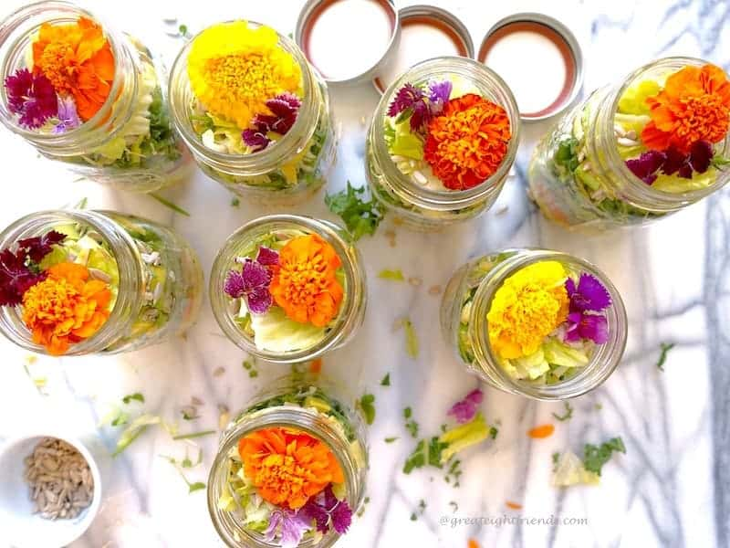 Psychedelic Salad 7