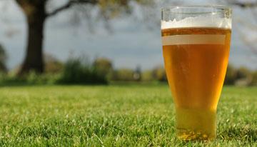 https://i1.wp.com/www.greatfermentations.com/wp-content/themes/greatfermentations/images/blog/summertime_beer.jpg