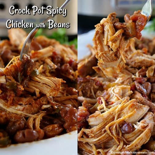 Crock Pot Spicy Chicken with Beans