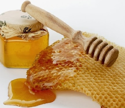 Eucalyptus Organic Honey