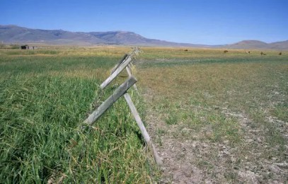 00000-02112 Fenceline contrast from overgrazing Red Rock River Centennial Valley Montana George Wuerthner-2625