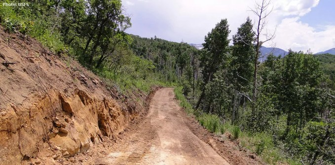 Newly made road in a national forest for coal mining