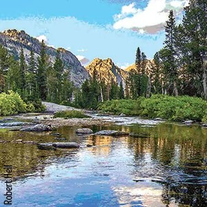 A scenic view of a stream with trees and mountains in the background