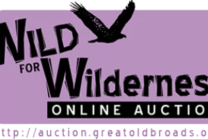 Wild4WildernessLogo-OL-350W