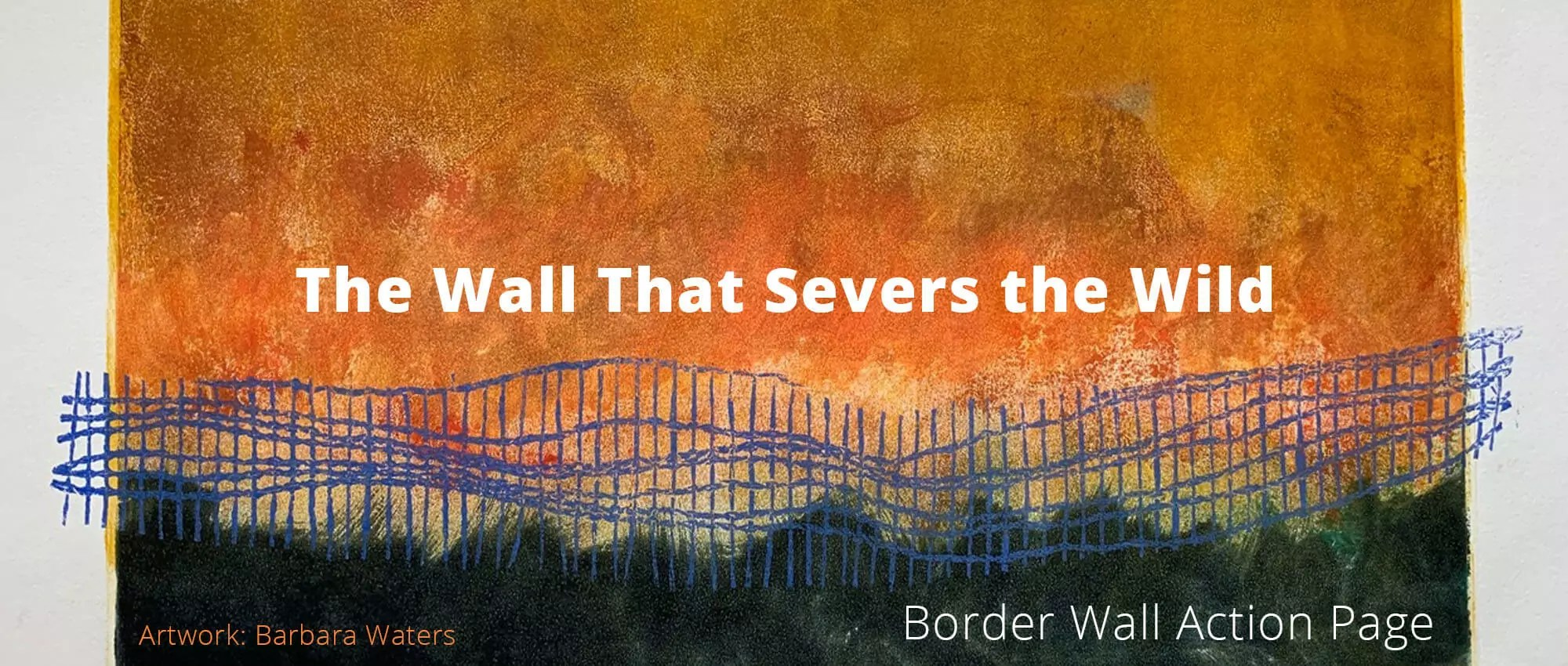 BorderwallAction