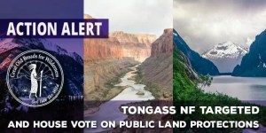 Oct_TongassAction_Alert_Picture