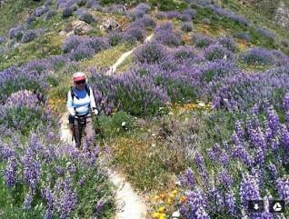 ginger_wild-land-legacy-fund-hiking
