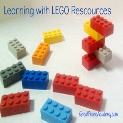 Homeschool Co-op Seminar for LEGO Learning