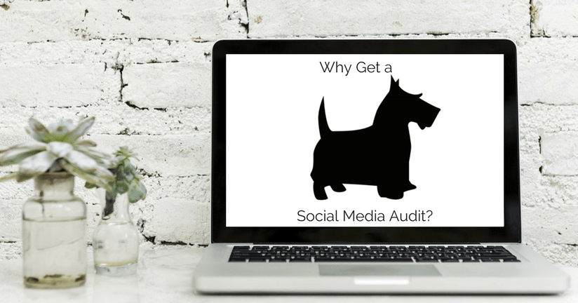 Why Get a Social Media Audit from Great Scott