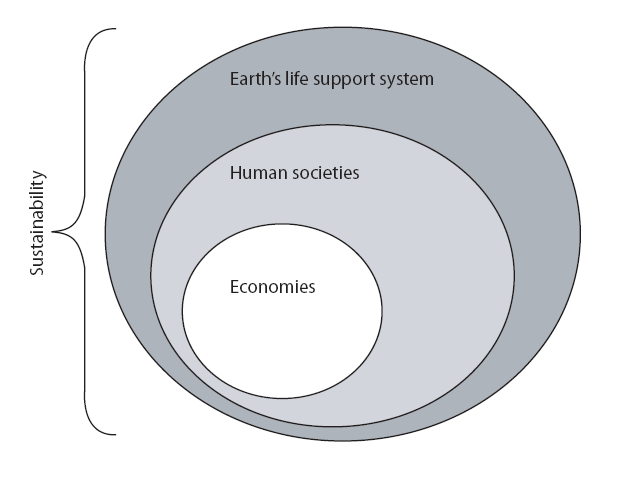 Sustainable development paradigm for the Anthropocene
