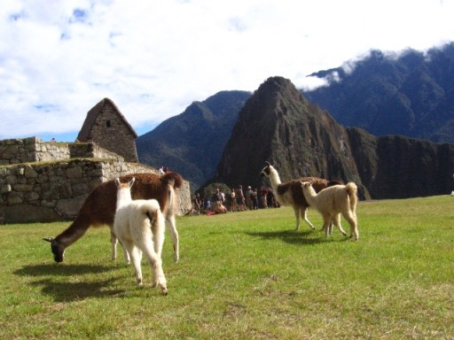 Peru - on top of the world