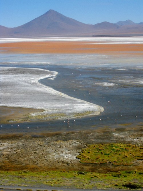 Laguna Colorada, Bolivia, Salar, Salt Flat, Natural Wonder