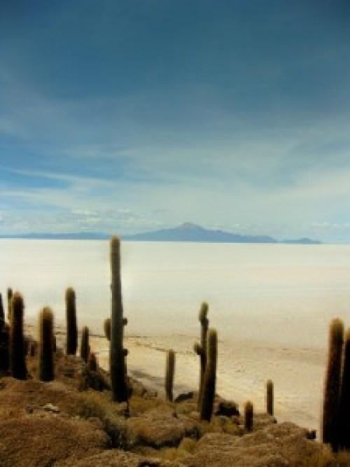 Fisherman Island, Isla Pescador, Salar de Uyuni, Bolivia