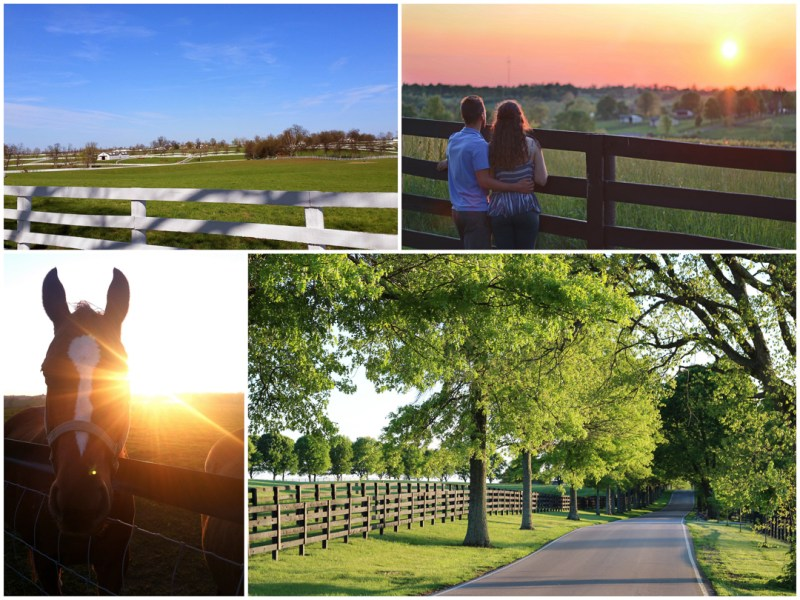 Kentucky Horse Park, Lexington, Old Frankfort Pike
