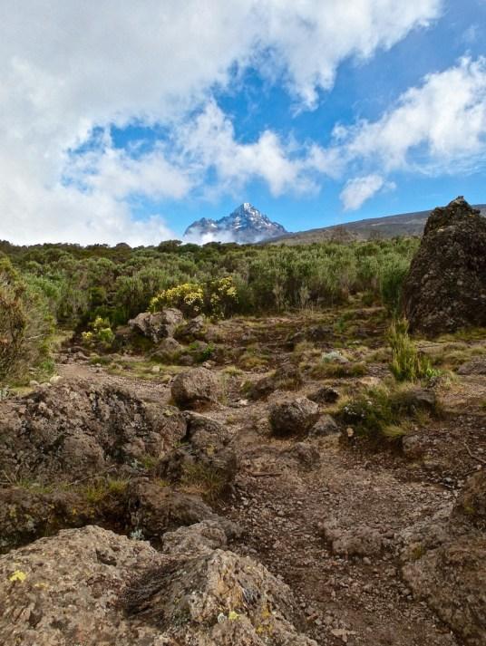 kilimanjaro hike view