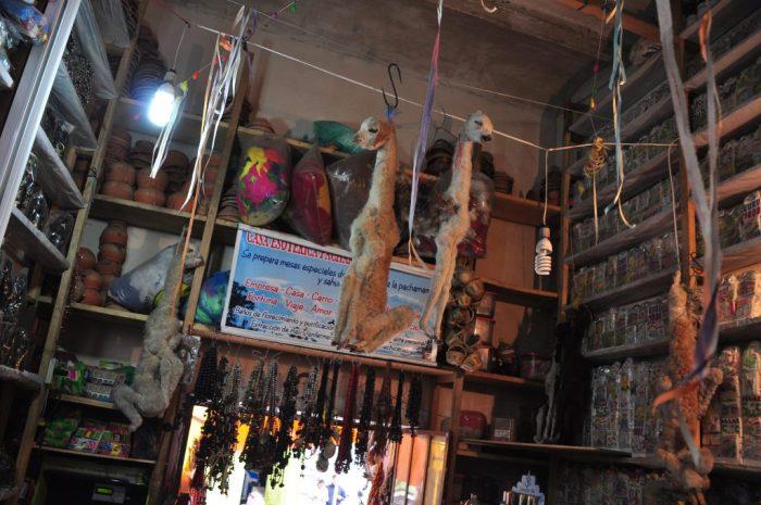 witch's market la paz llama fetus
