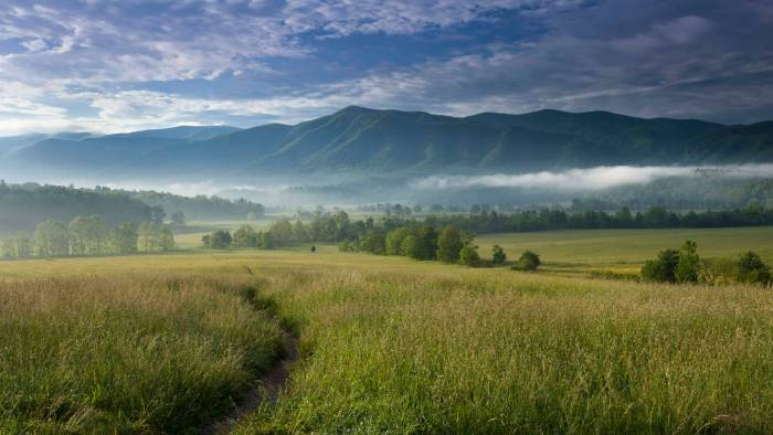 cades cove gatlinburg