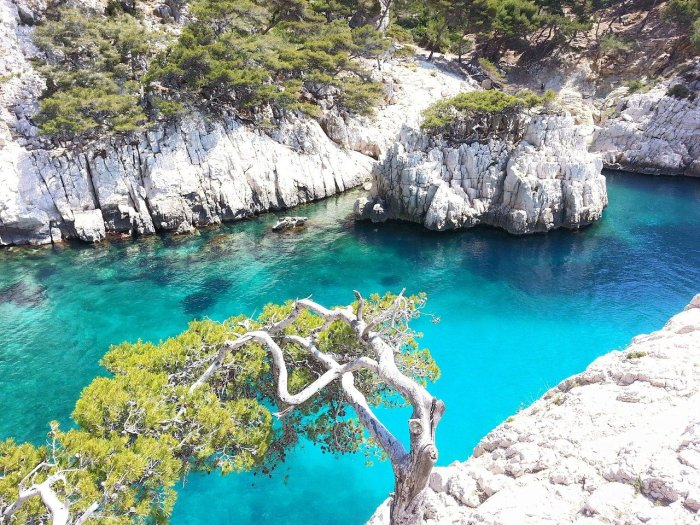 marseille coves