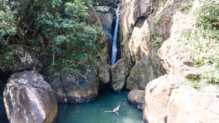 swimming waterfall yunque