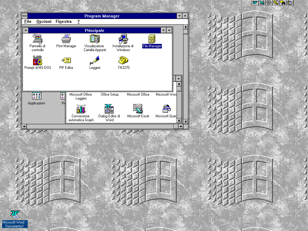 Windows31