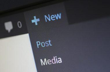 Cosa è WordPress - Parte del CMS