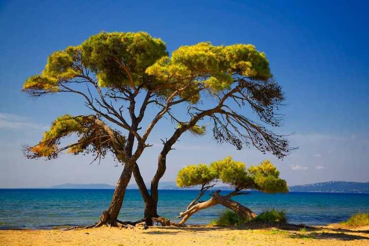 Keto Mediterranean Retreat in Greece 2020 19