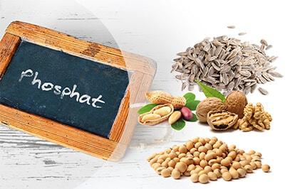Phosphat in der Nahrung