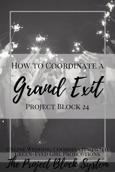 How to Coordinate a Grand Exit for your Wedding. Wedding Sparkler Exit. How to Plan a Sparkler Exit. How to Plan a Grand Exit. Couple's Exit.