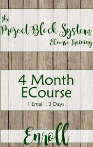 The Project Block System Training ECourse 4 Month