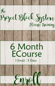 The Project Block System Training ECourse 6 Month