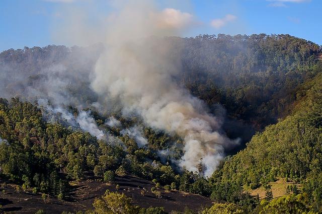 Estul Australiei, lovit de vijelii, furtuni de nisip, incendii și zăpadă în aceeași zi