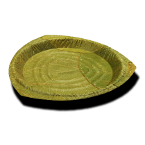 Leaf plate by Leaf Republic