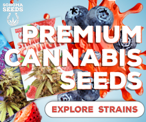 Sonoma Seeds - Premium Cannabis Seeds 300x250