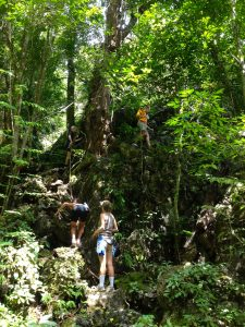 Jungle Trekking through Khao Sok