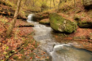 Fall Time in the Ozarks!!!
