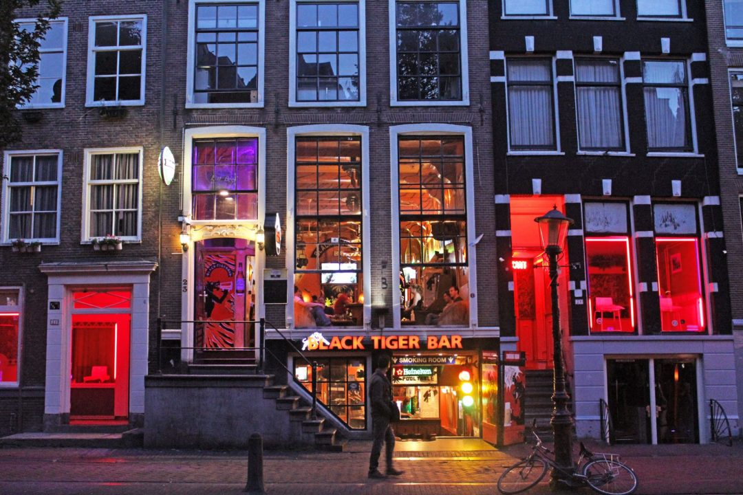 Black tiger bar fun facts about amsterdam