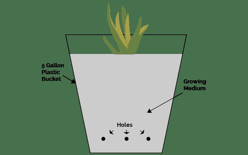 5 Gallon Bucket Garden Plans