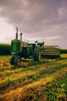 Greenane Farms - The Farm
