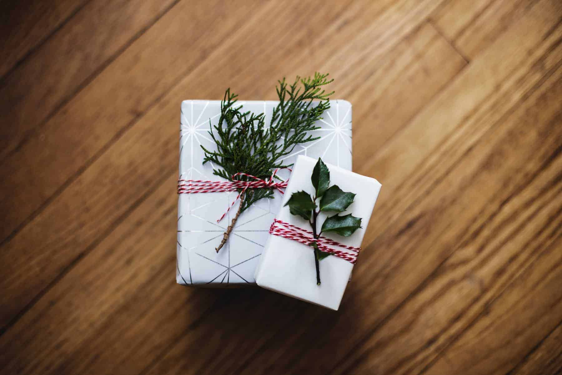 Green at Home Gift Guide