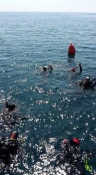 Partecipanti e trainer si immergono insieme durante le esercitazioni