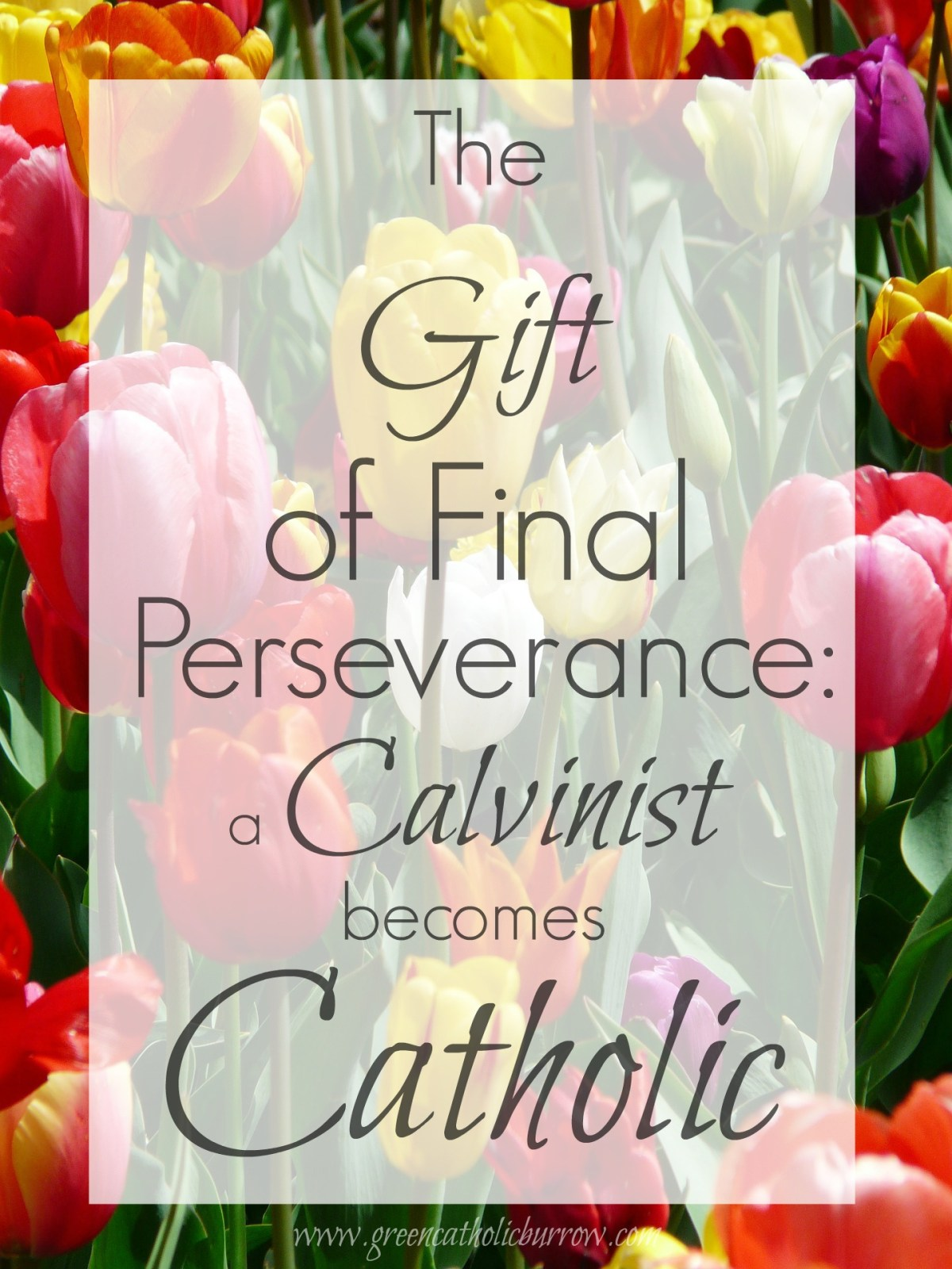 Why letting go of the Reformed doctrine of the Perseverance of the Saints was not a difficult step for me.