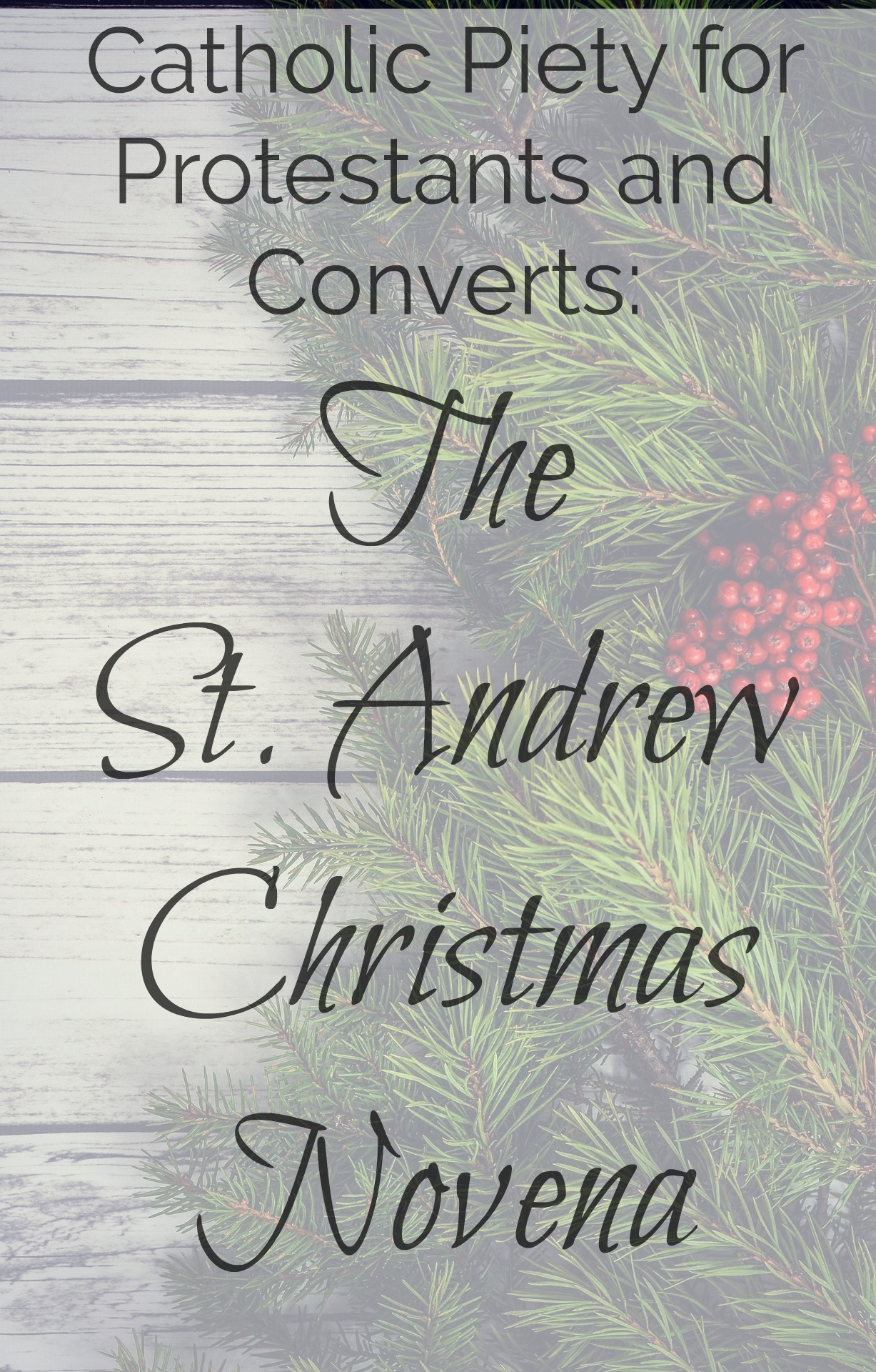 St. Andrew Christmas Novena | Green Catholic Burrow
