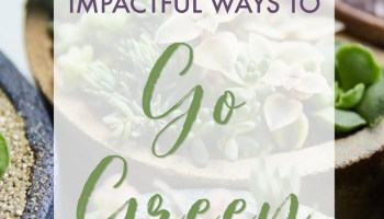 Go Green: The Top 15 Most Important Sustainable Steps