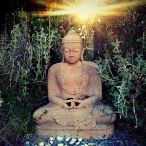 Buddha1-Square-750x750