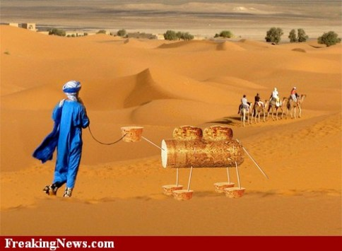 Cork-camel