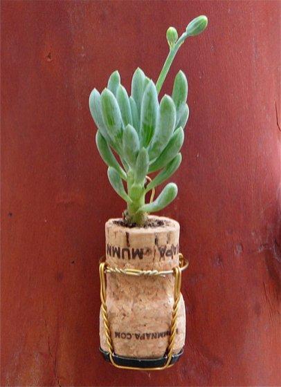 vaso rolha champagne_fantasticetsyfinds.tumblr.com