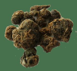 Making Cannabis Hash