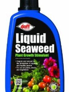 Liquid Seaweed Cannabis Nutrients