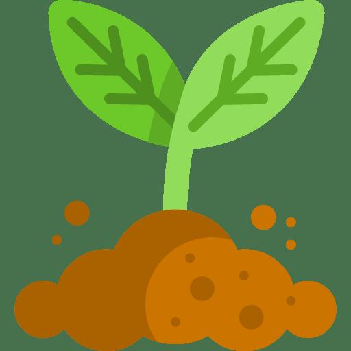 Planting Outdoor Garden