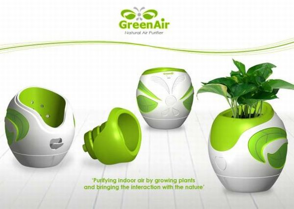 GreenAir Natural Air Purifier